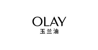 广东集团网站设计案例-玉兰油